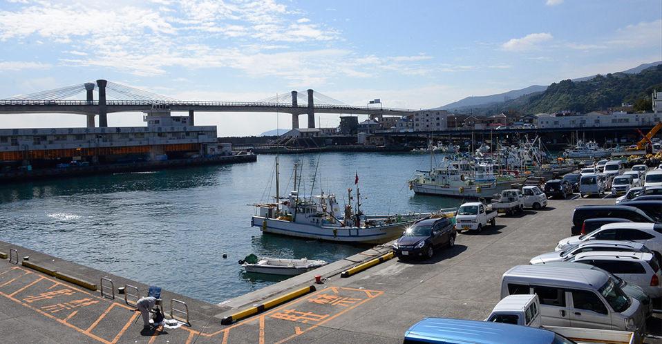 小田原漁港全景