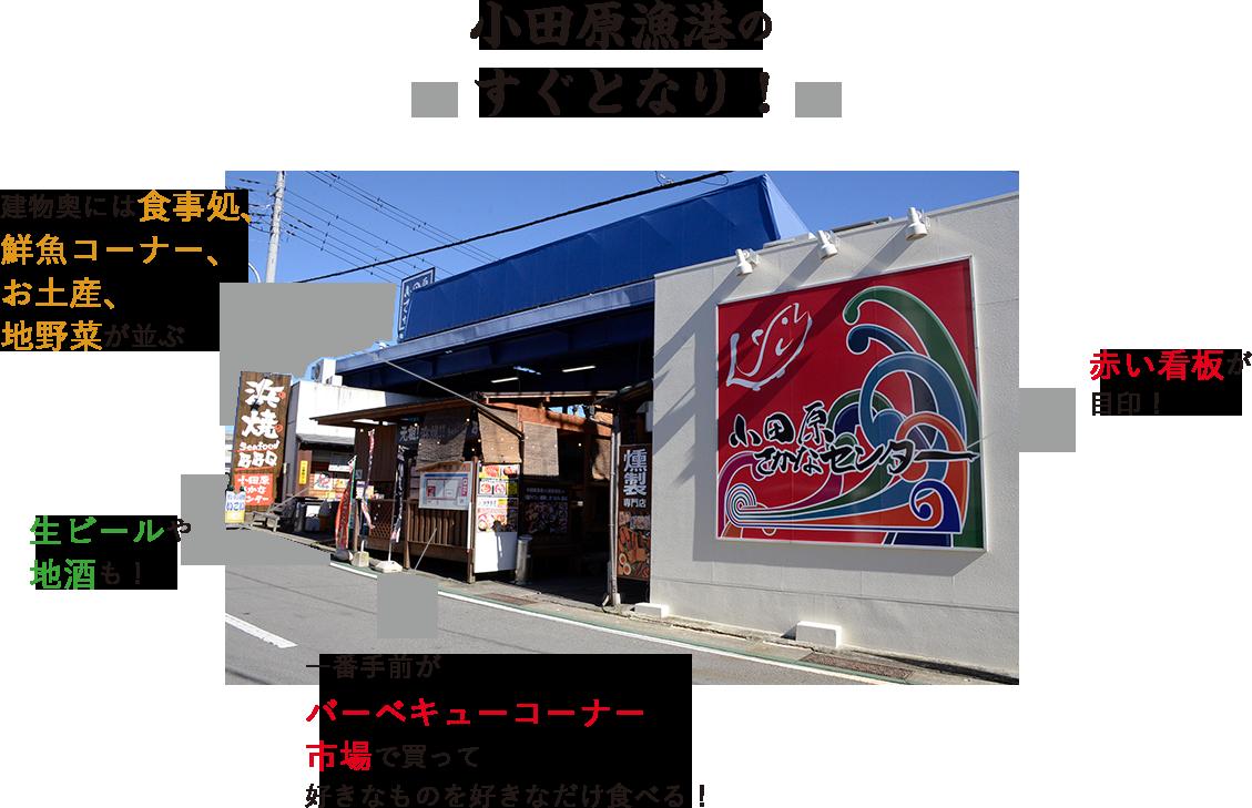 小田原漁港のすぐとなり!
