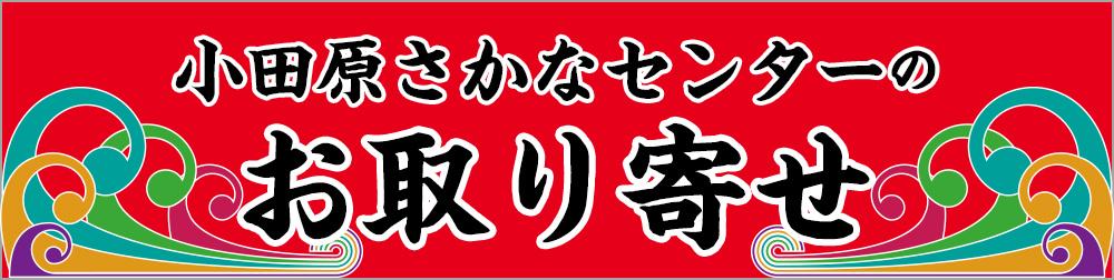 小田原さかなセンターの「通信販売」始まりました!